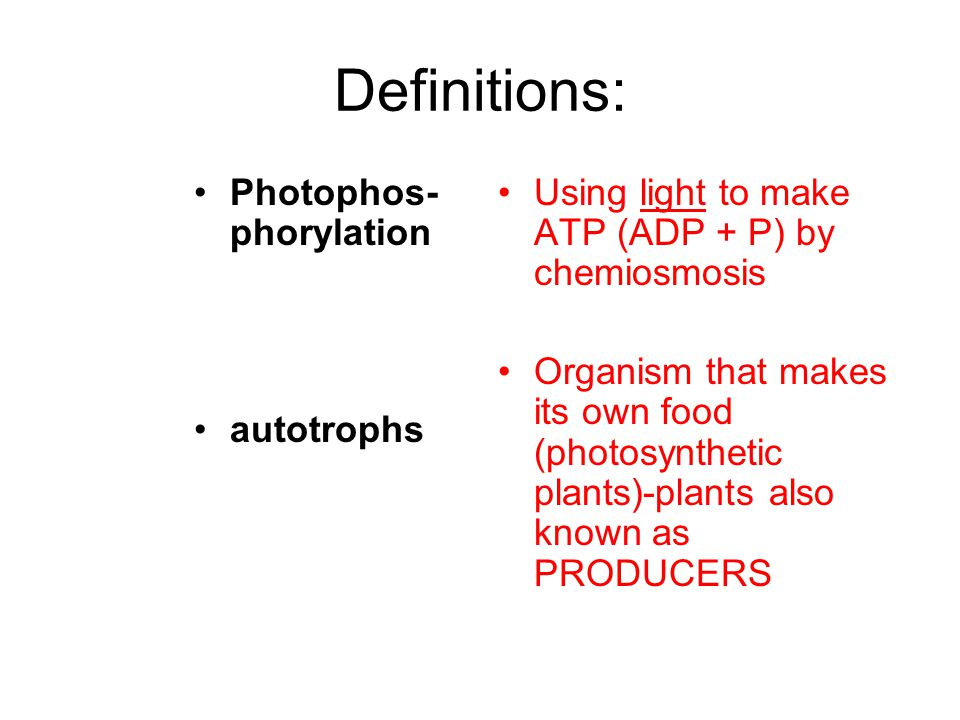 Definitions: Photophos- phorylation autotrophs