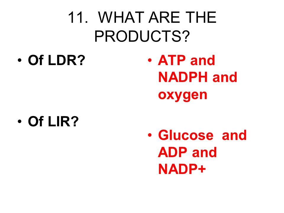 11. WHAT ARE THE PRODUCTS Of LDR Of LIR ATP and NADPH and oxygen