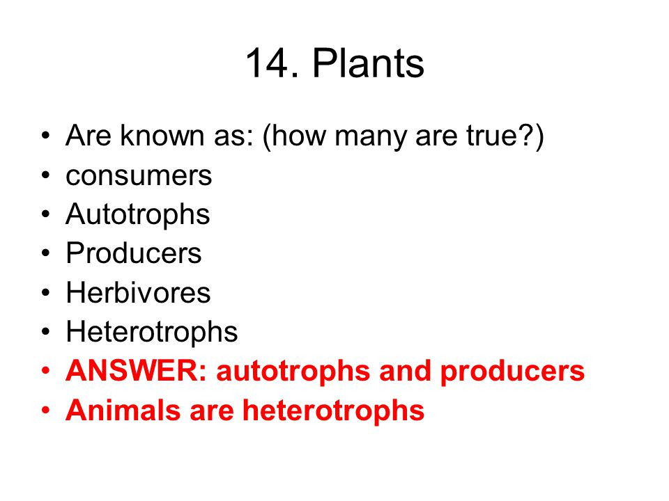 14. Plants Are known as: (how many are true ) consumers Autotrophs