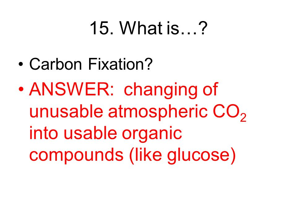 15. What is…. Carbon Fixation.