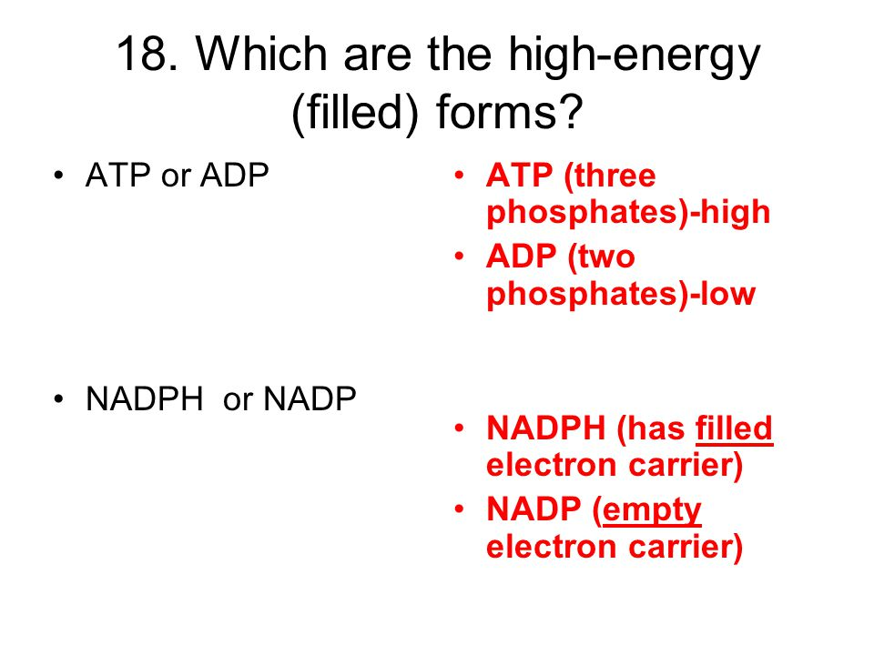 18. Which are the high-energy (filled) forms
