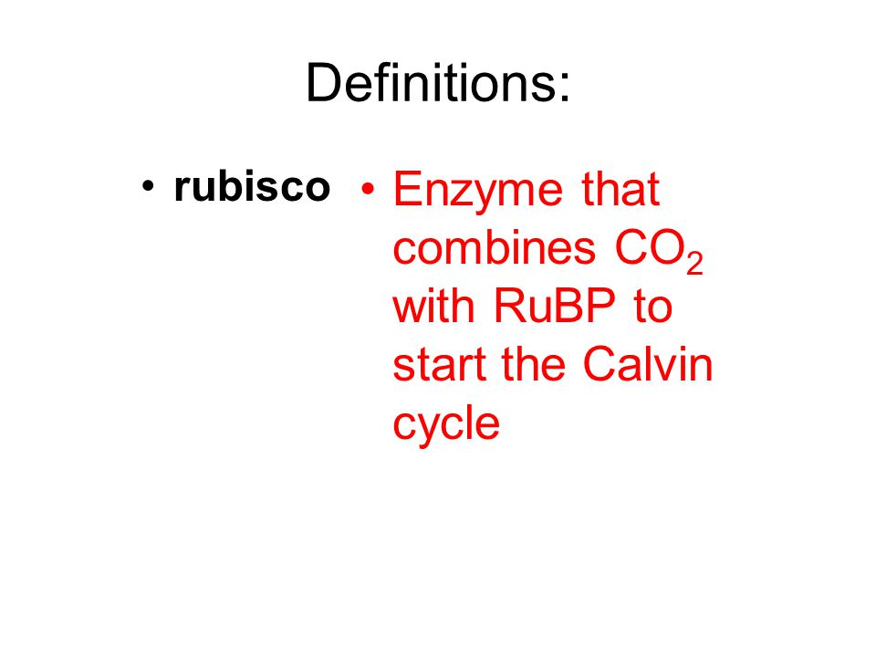 Definitions: rubisco Enzyme that combines CO2 with RuBP to start the Calvin cycle