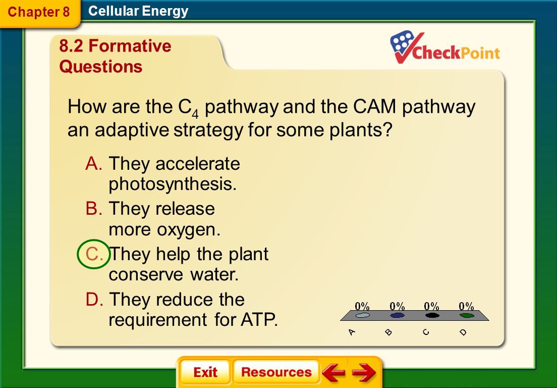 How are the C4 pathway and the CAM pathway