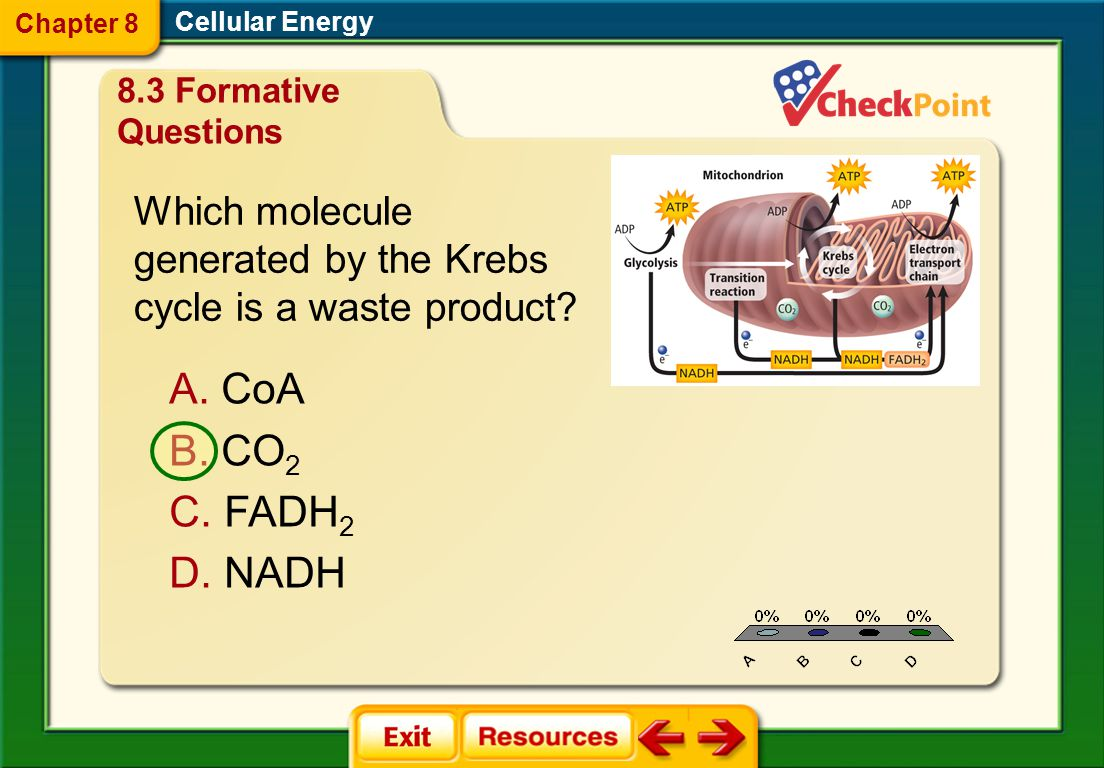 CoA CO2 FADH2 NADH Which molecule generated by the Krebs