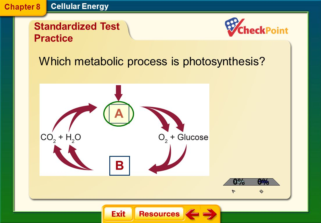 A B Which metabolic process is photosynthesis