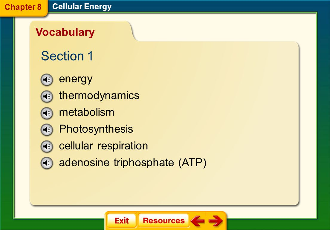 Section 1 Vocabulary energy thermodynamics metabolism Photosynthesis