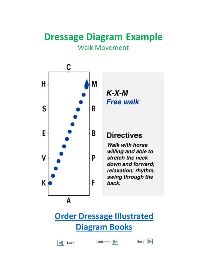 Dressage Diagram Example Order Dressage Illustrated Diagram Books