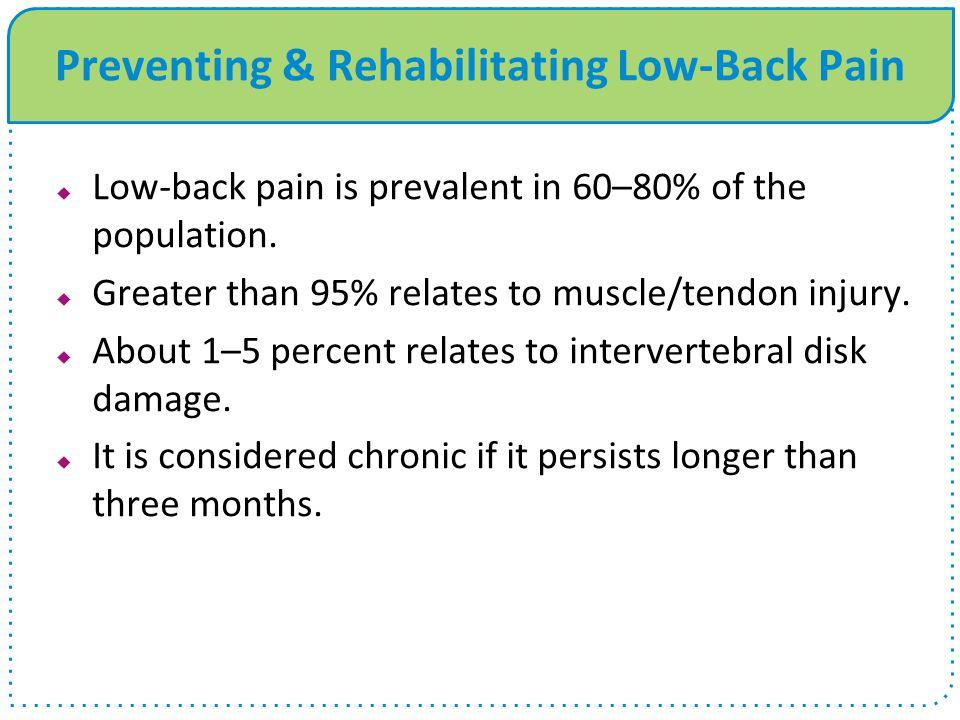 Preventing & Rehabilitating Low-Back Pain