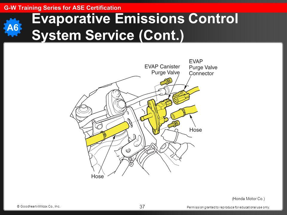 Evaporative Emissions Control System Service (Cont.)
