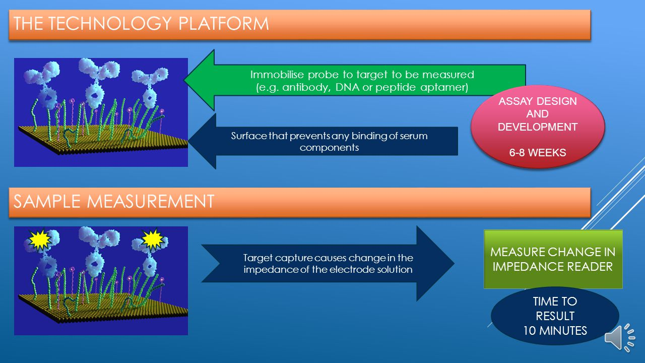 THE TECHNOLOGY PLATFORM