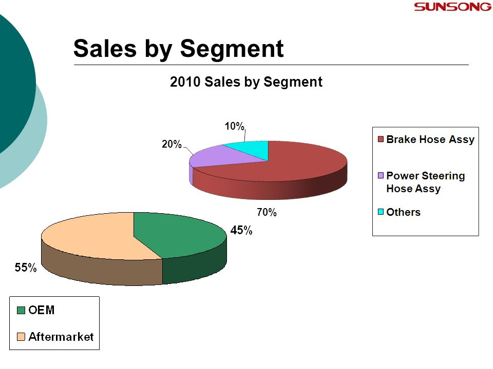 Sales by Segment 2010 Sales by Segment 13