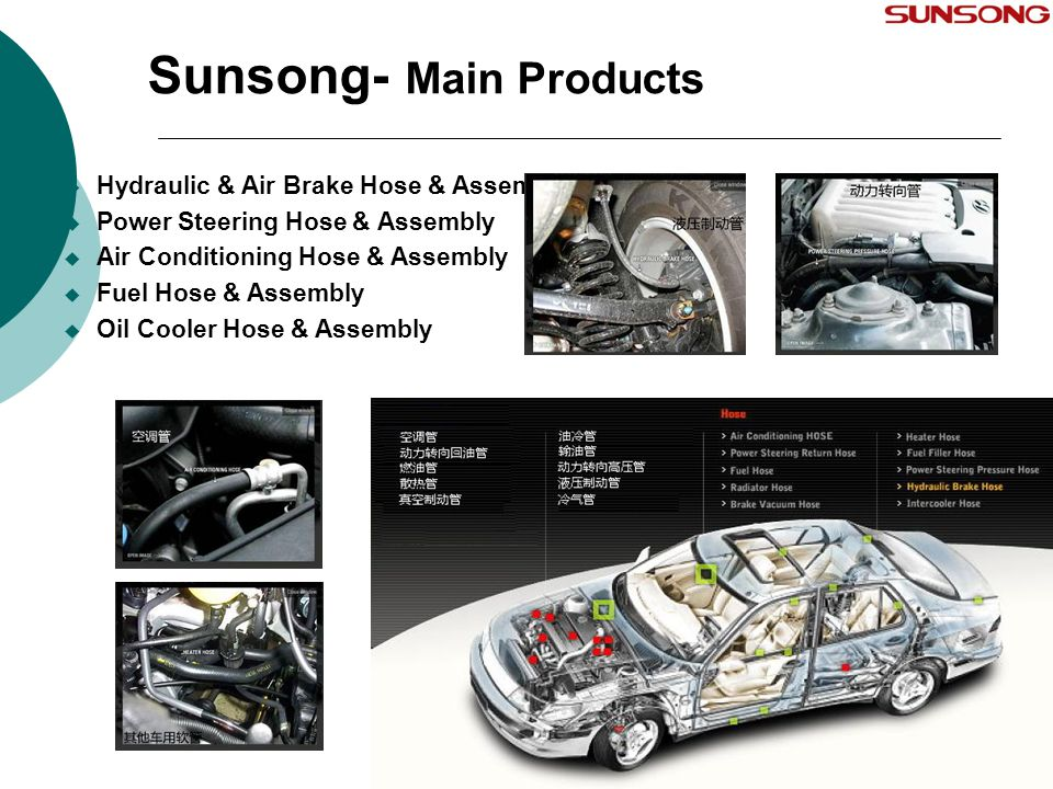 Sunsong- Main Products