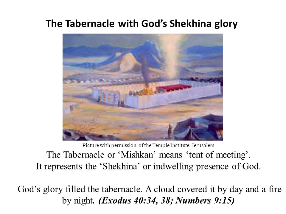 The Tabernacle with Godu0027s Shekhina glory  sc 1 st  SlidePlayer & Christ and the Tabernacle - ppt video online download