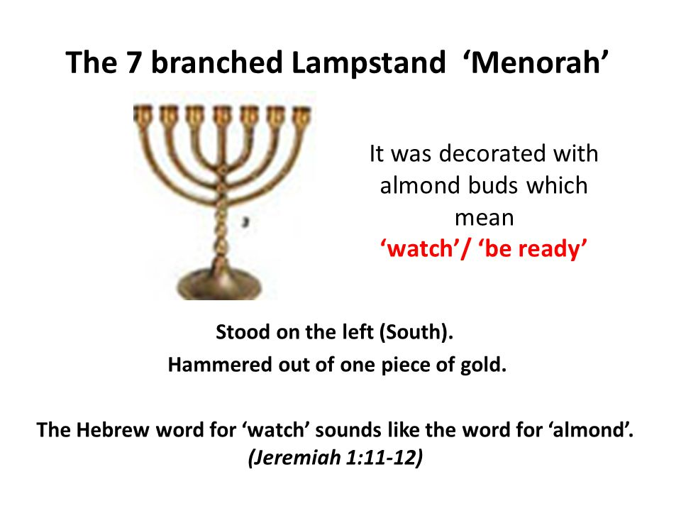 The 7 branched Lampstand 'Menorah'