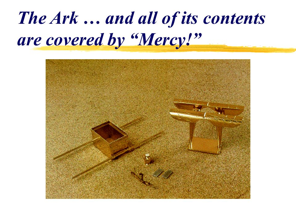 The Ark … and all of its contents are covered by Mercy!