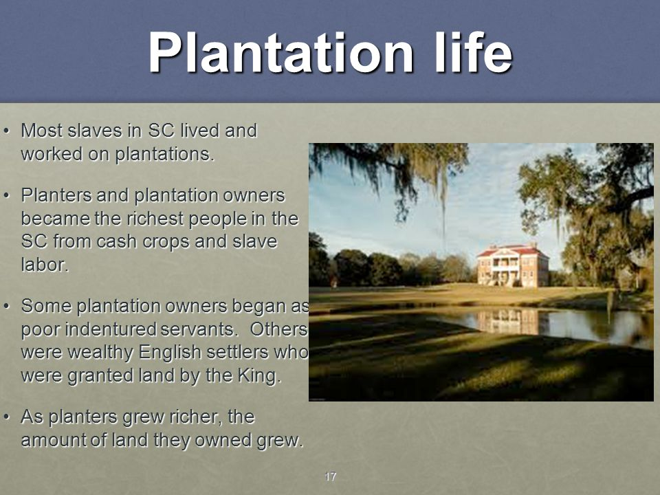Plantation life Most slaves in SC lived and worked on plantations.