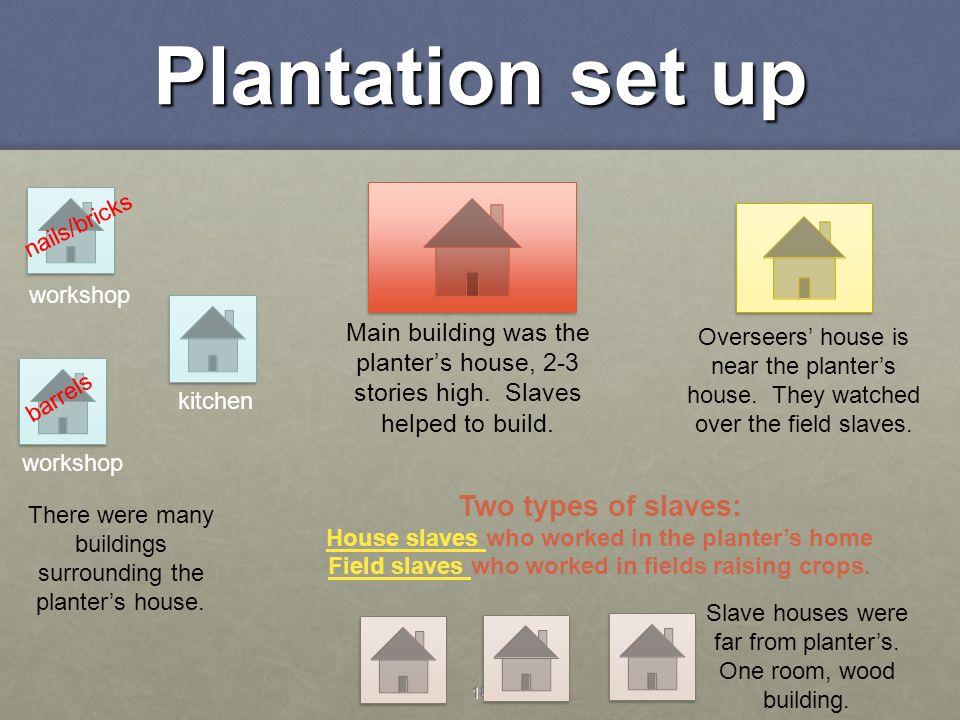 Field slaves who worked in fields raising crops.