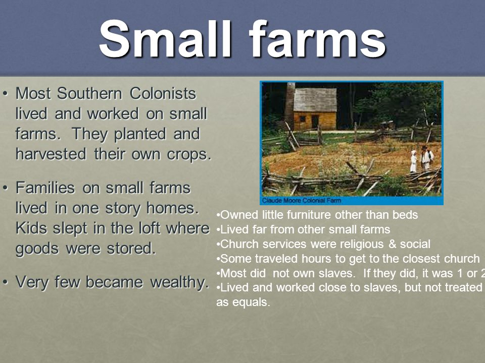 Small farms Most Southern Colonists lived and worked on small farms. They planted and harvested their own crops.