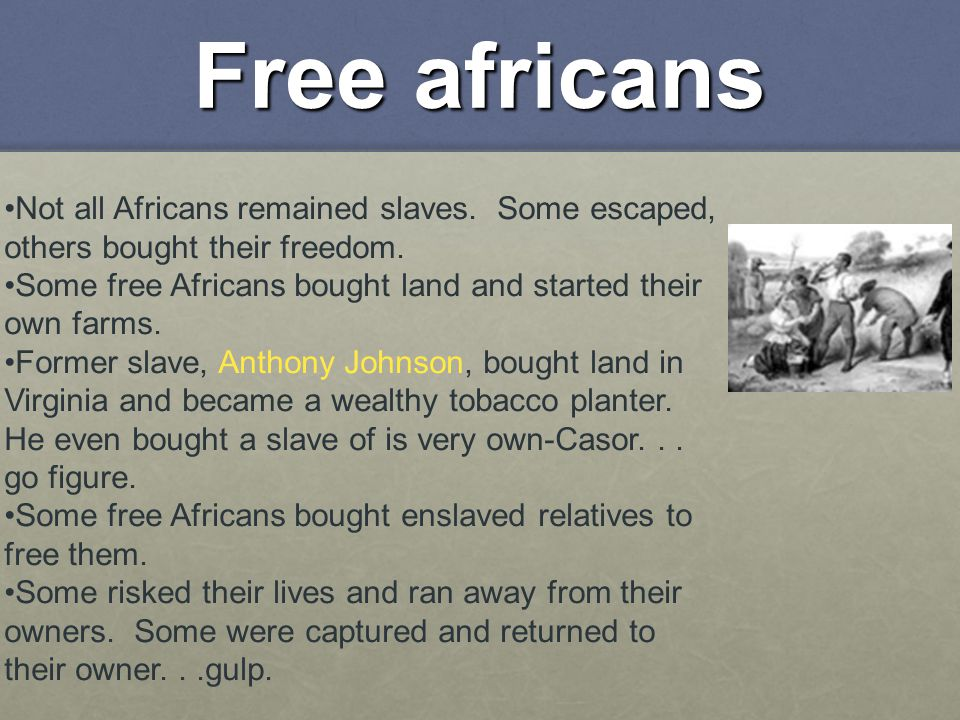 Free africans Not all Africans remained slaves. Some escaped, others bought their freedom.