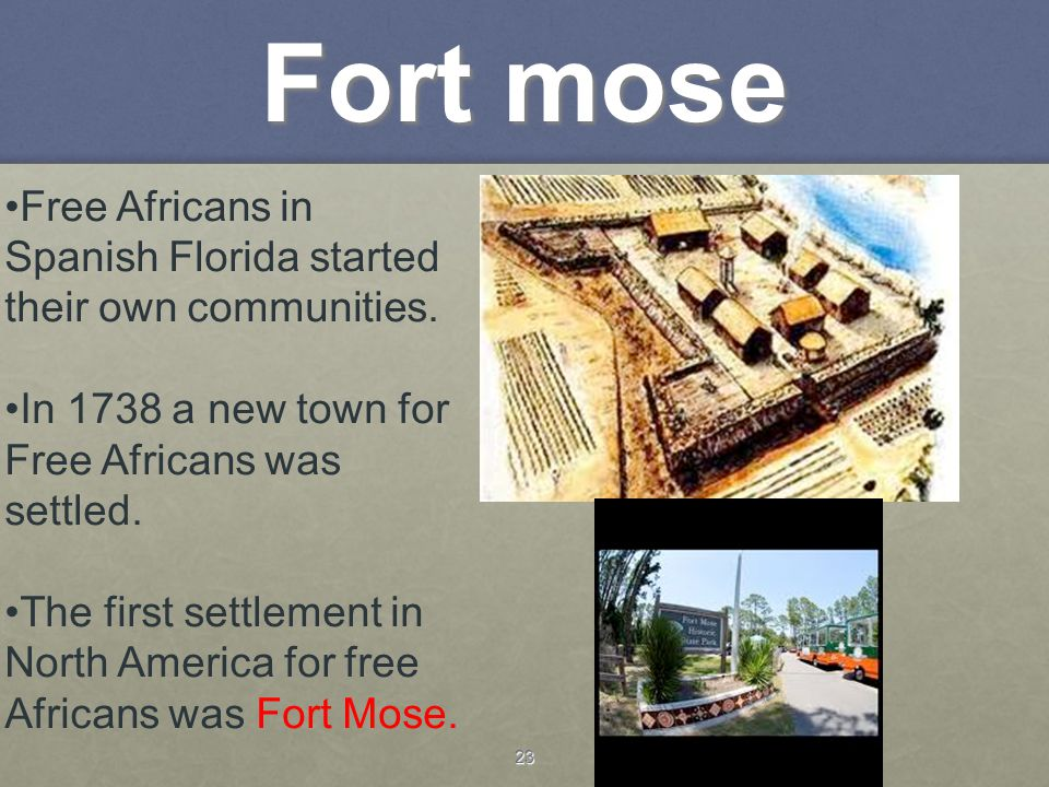 Fort mose Free Africans in Spanish Florida started their own communities. In 1738 a new town for Free Africans was settled.