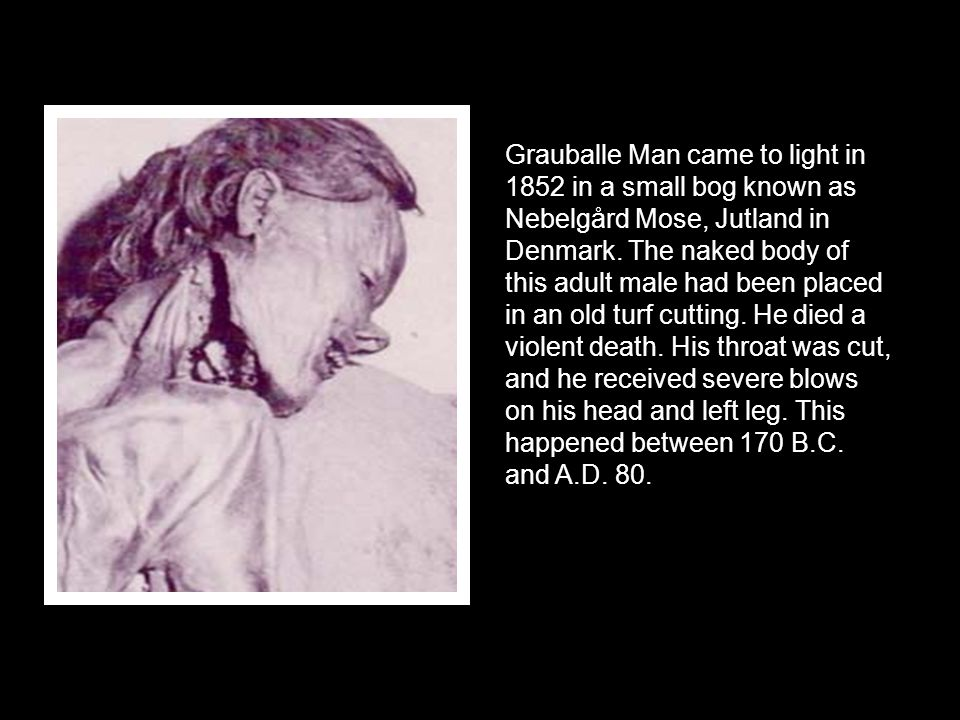 Grauballe Man came to light in 1852 in a small bog known as Nebelgård Mose, Jutland in Denmark.