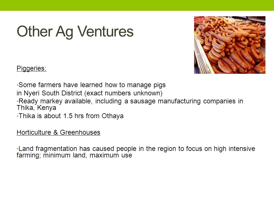 Other Ag Ventures Piggeries: