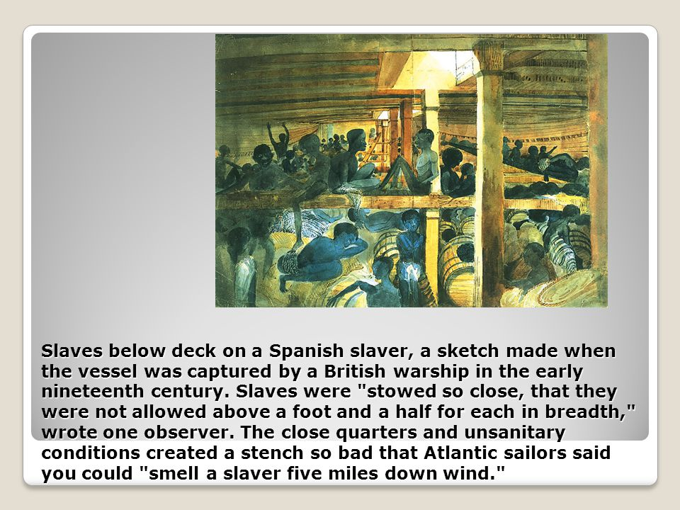 Slaves below deck on a Spanish slaver, a sketch made when the vessel was captured by a British warship in the early nineteenth century.