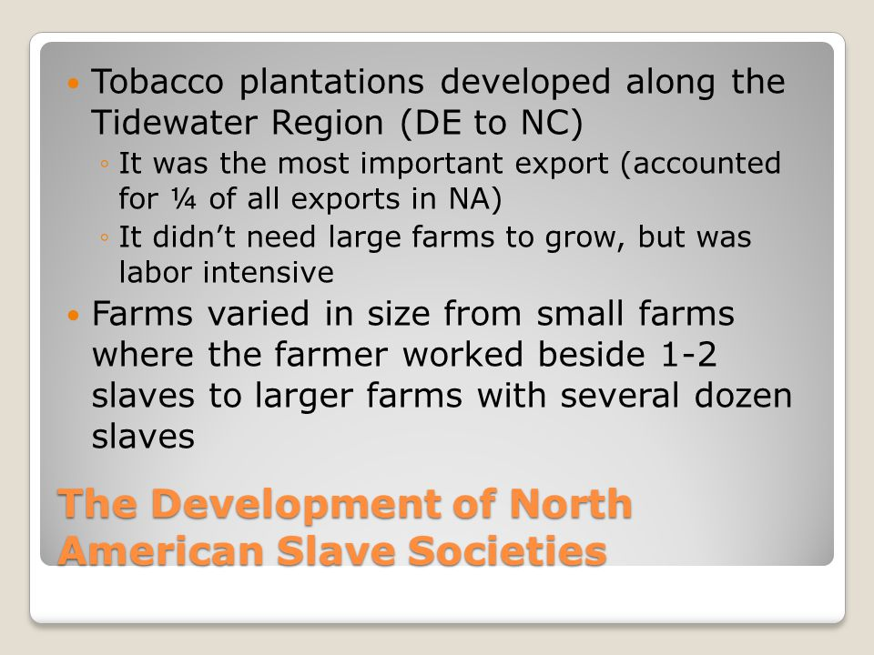 The Development of North American Slave Societies