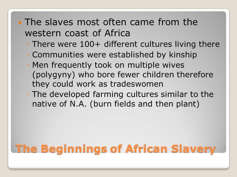 The Beginnings of African Slavery