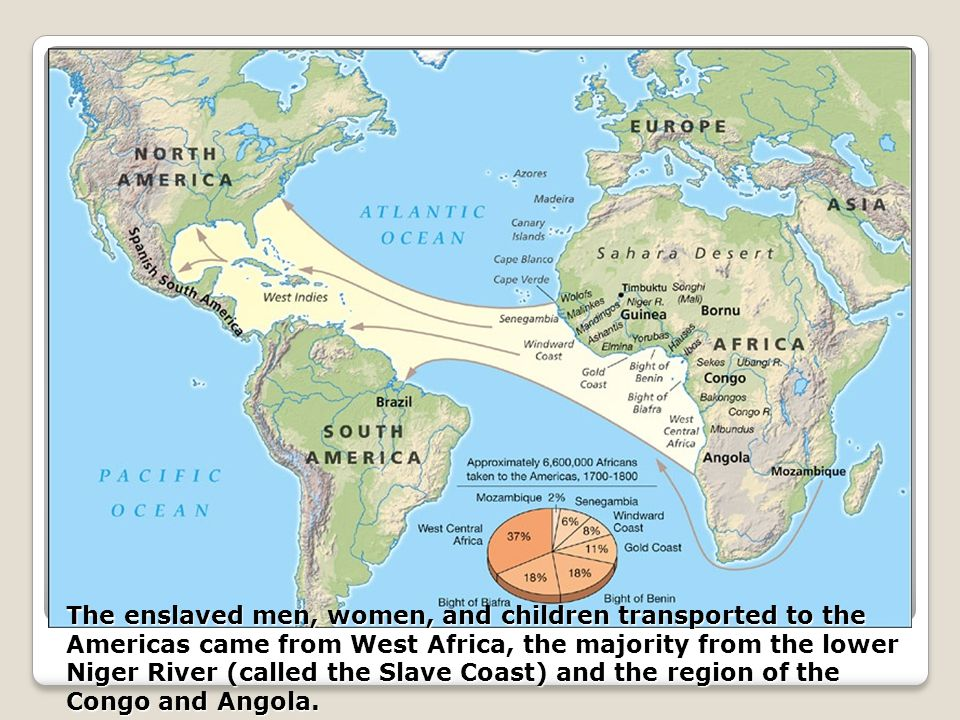 The enslaved men, women, and children transported to the Americas came from West Africa, the majority from the lower Niger River (called the Slave Coast) and the region of the Congo and Angola.