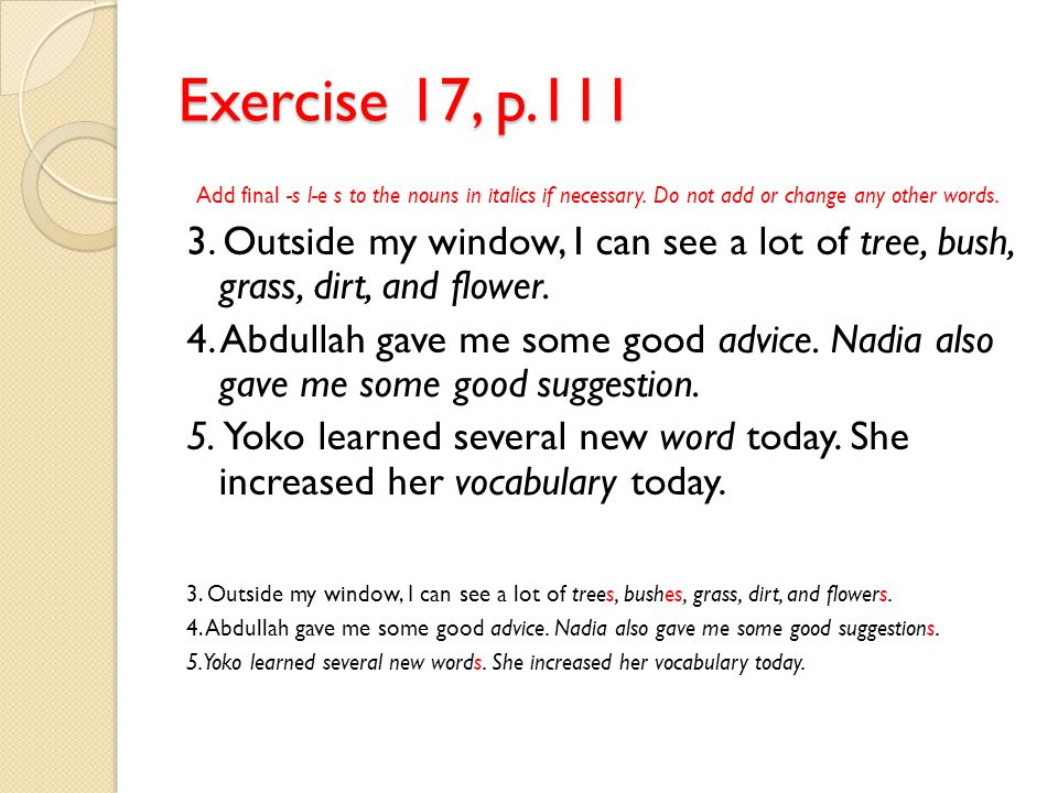 Exercise 17, p.111 Add final -s l-e s to the nouns in italics if necessary. Do not add or change any other words.
