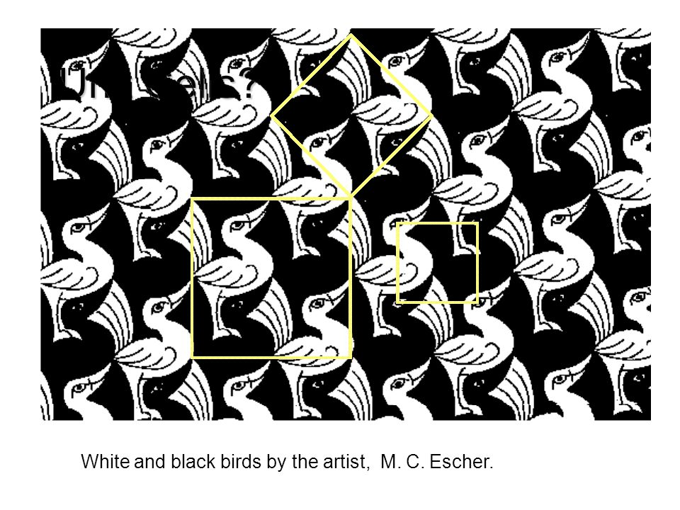 Unit Cells White and black birds by the artist, M. C. Escher.