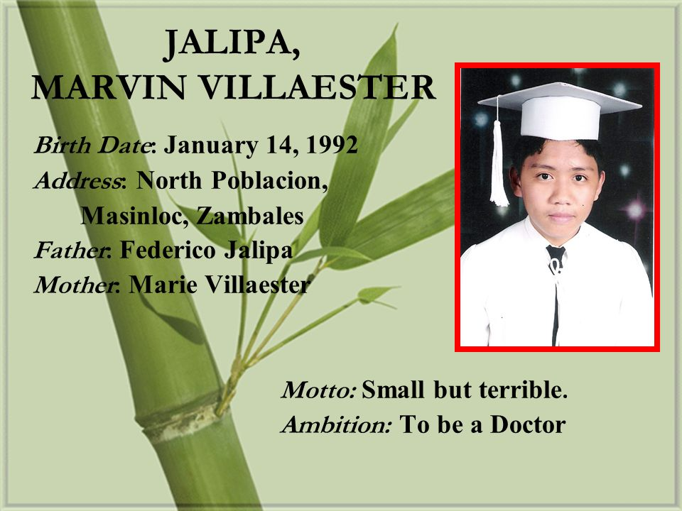 JALIPA, MARVIN VILLAESTER
