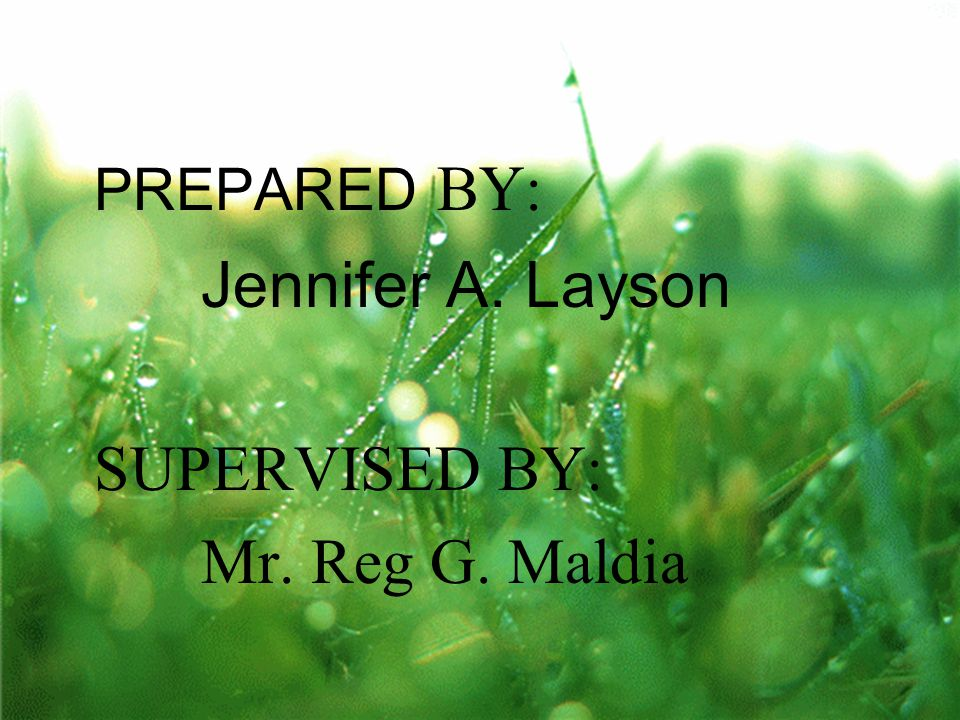 PREPARED BY: Jennifer A. Layson SUPERVISED BY: Mr. Reg G. Maldia