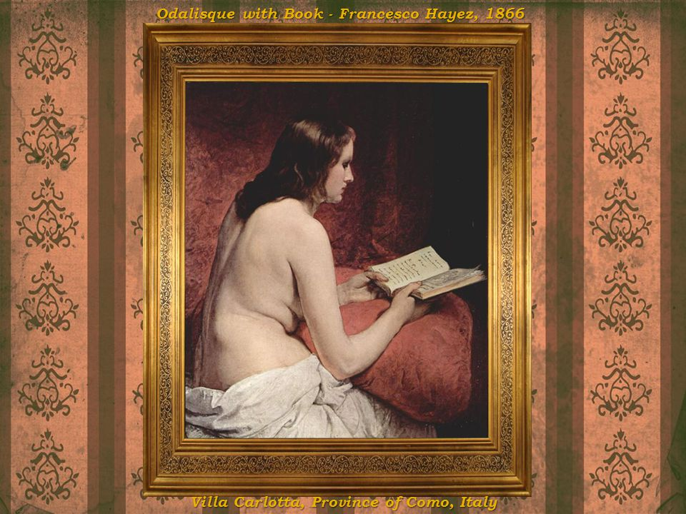 Odalisque with Book - Francesco Hayez, 1866
