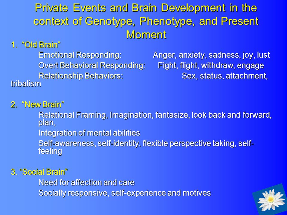 Private Events and Brain Development in the context of Genotype, Phenotype, and Present Moment