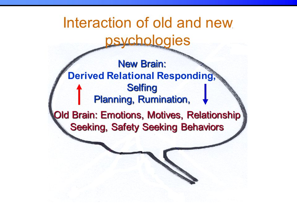 Sources of behaviour Interaction of old and new psychologies