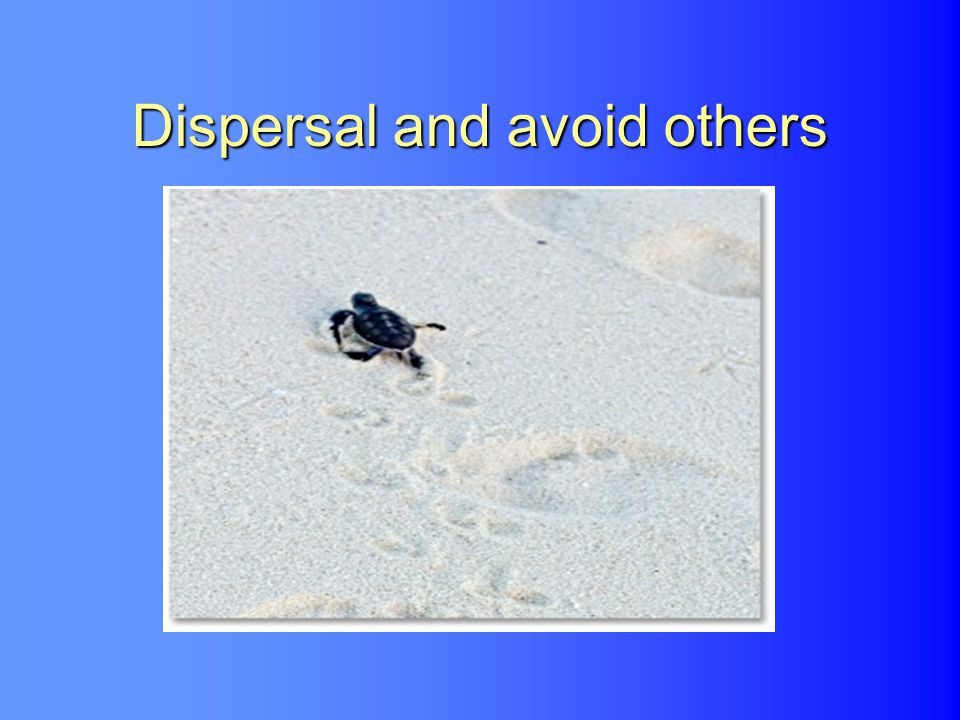 Dispersal and avoid others