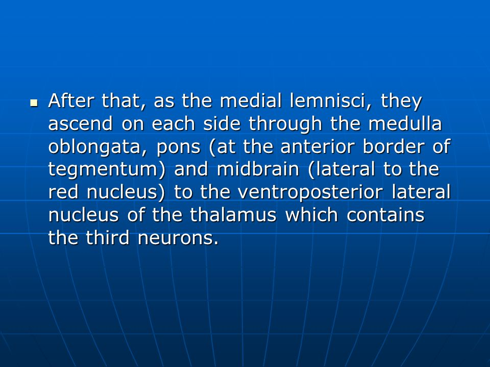 After that, as the medial lemnisci, they ascend on each side through the medulla oblongata, pons (at the anterior border of tegmentum) and midbrain (lateral to the red nucleus) to the ventroposterior lateral nucleus of the thalamus which contains the third neurons.