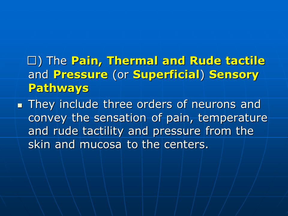 Ⅱ) The Pain, Thermal and Rude tactile and Pressure (or Superficial) Sensory Pathways