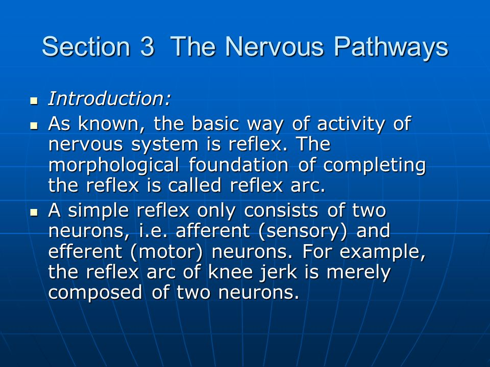 Section 3 The Nervous Pathways