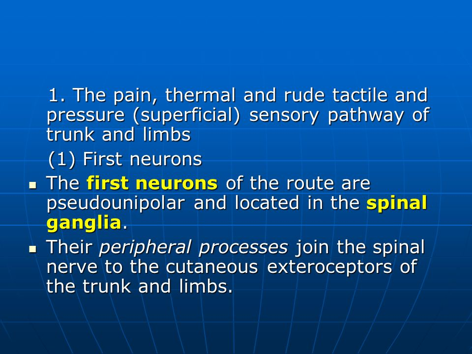 1. The pain, thermal and rude tactile and pressure (superficial) sensory pathway of trunk and limbs