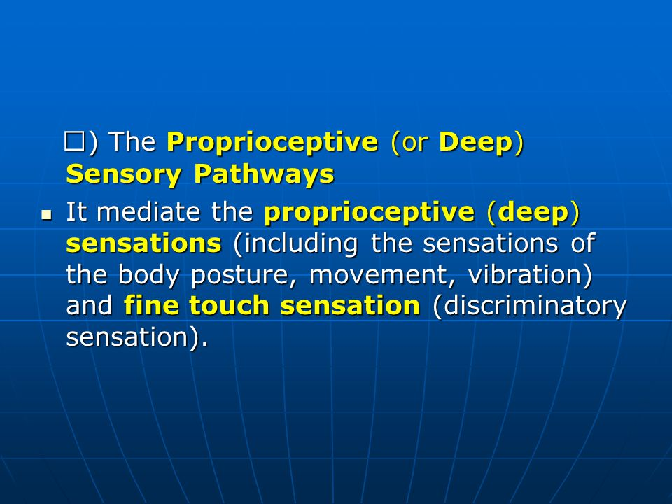 Ⅰ) The Proprioceptive (or Deep) Sensory Pathways