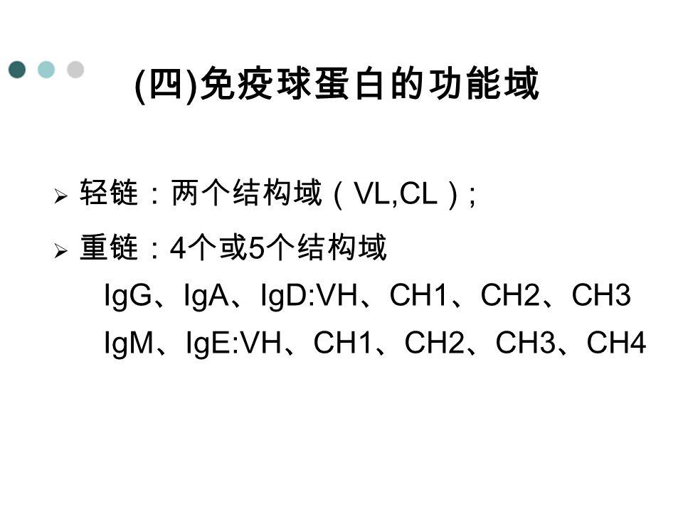 (四)免疫球蛋白的功能域 轻链:两个结构域(VL,CL);