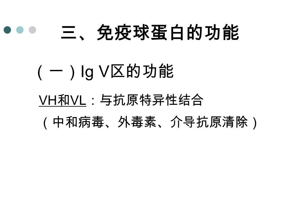VH和VL:与抗原特异性结合 (中和病毒、外毒素、介导抗原清除)