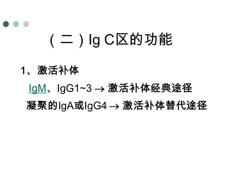 (二)Ig C区的功能 1、激活补体 IgM、IgG1~3  激活补体经典途径 凝聚的IgA或IgG4  激活补体替代途径 4、