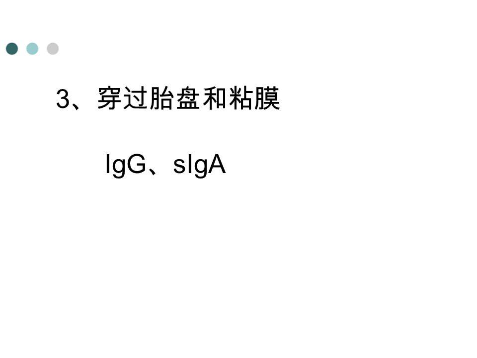 3、穿过胎盘和粘膜 IgG、sIgA