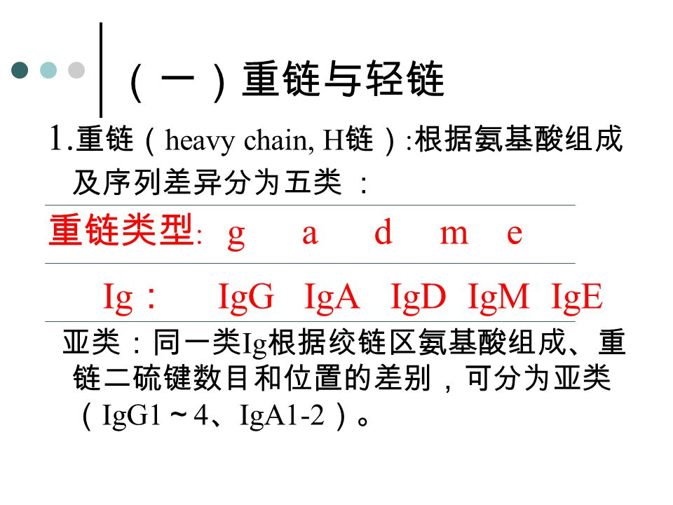 (一)重链与轻链 1.重链(heavy chain, H链):根据氨基酸组成及序列差异分为五类 : 重链类型: g a d m e