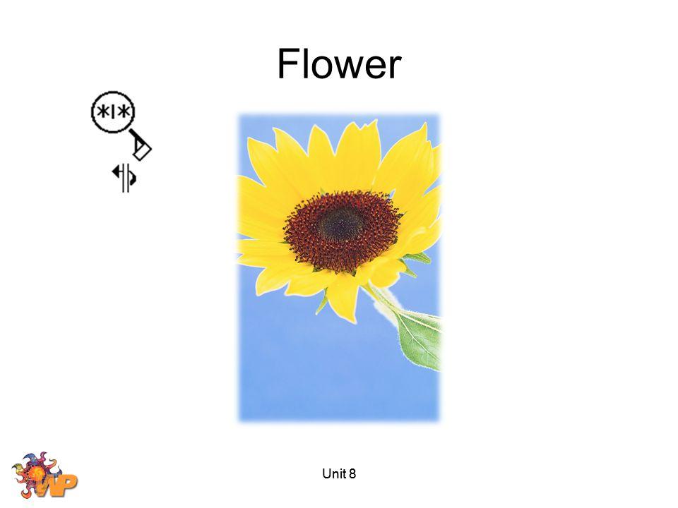 Flower Unit 8 Unit 8