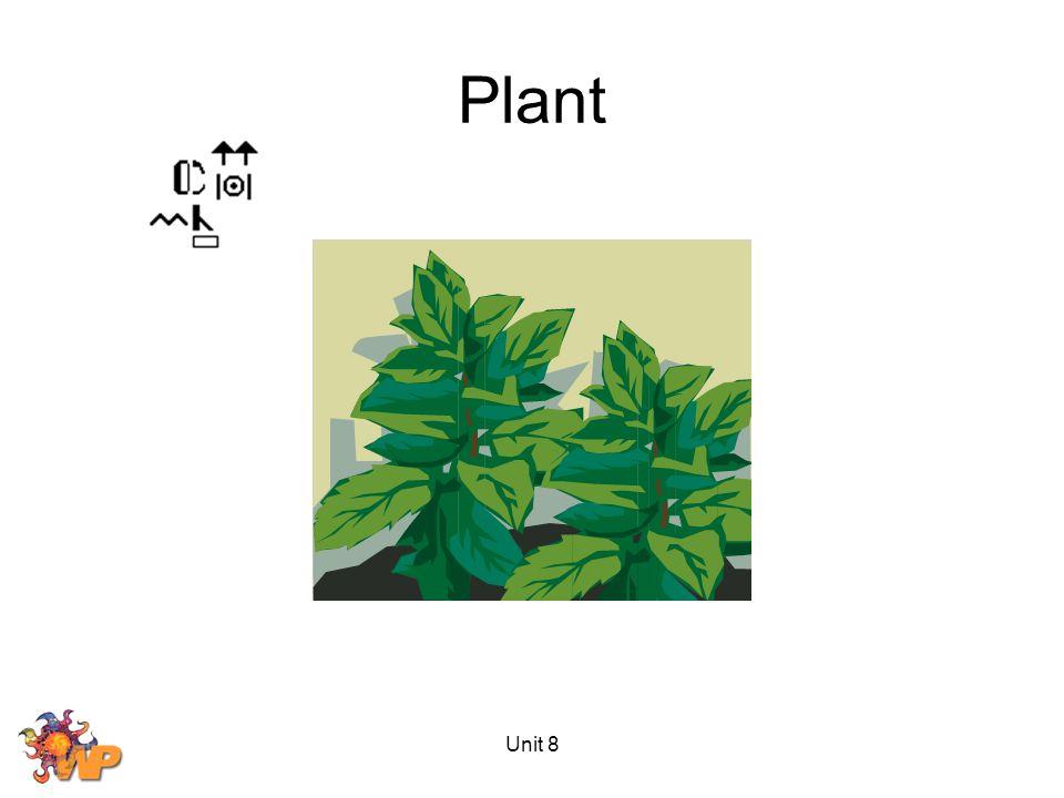 Plant Unit 8